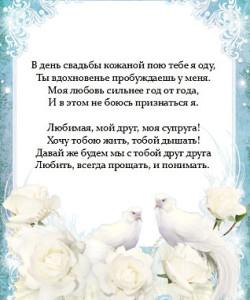 pozdravleniya-s-godovshinoy-svadby-zhene3