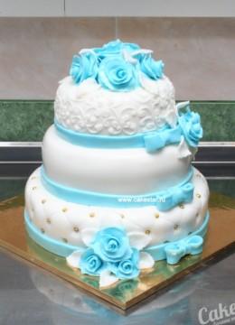 cake-45.800x600w